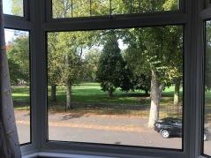 beautiful view-canterbury